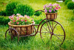 Prendre soin de son jardin voici cinq conseils pour vous aider